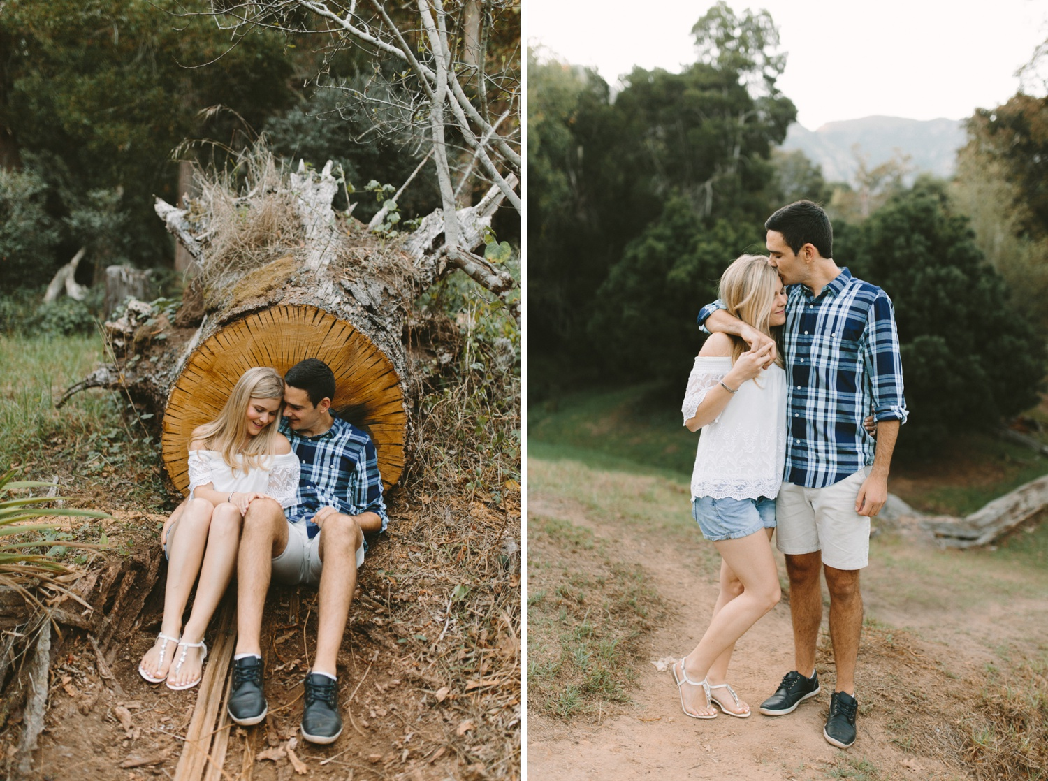Forest-engagement20