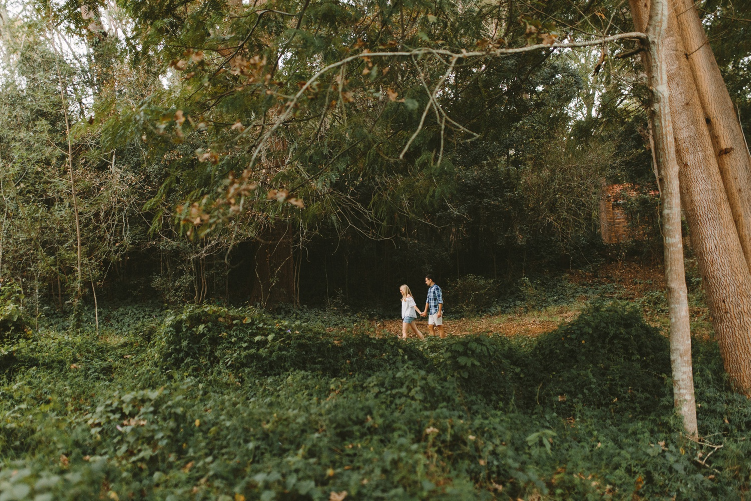 Forest-engagement23