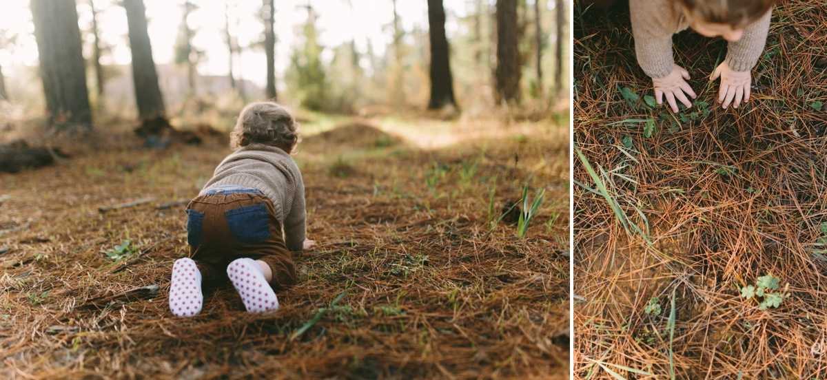 Papayannis-forest-family-shoot16